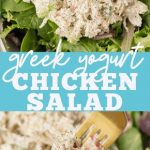 Weight Watchers Chicken Salad with Grapes | My Crazy Good Life