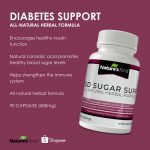 Diabetes Support Supplement - with 5 Best HERBS for Diabetes Control |  Shopee Philippines