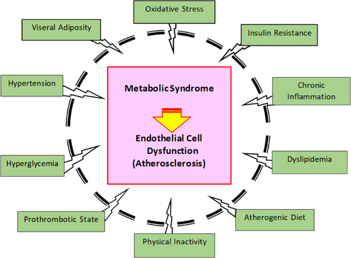 The association between metabolic syndrome components and the development  of atherosclerosis | Journal of Human Hypertension