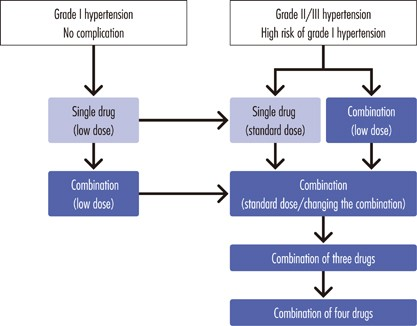 Chapter 5. Treatment with antihypertensive drugs | Hypertension Research