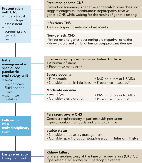 Management of congenital nephrotic syndrome: consensus recommendations of  the ERKNet-ESPN Working Group | Nature Reviews Nephrology