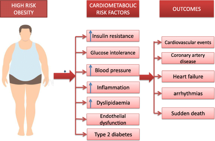 Diabetes and cardiovascular disease: inter-relation of risk factors and  treatment | Future Journal of Pharmaceutical Sciences | Full Text
