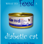 What to Feed a Diabetic Cat   Cats and Diabetes