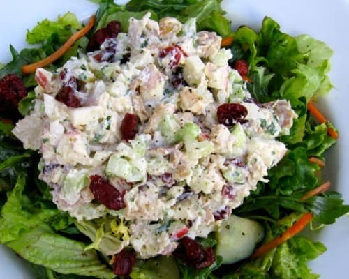 BLT Grilled Chicken Salad {GF, Low Cal Paleo} - Skinny Fitalicious®