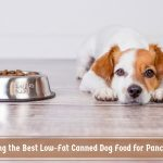 Choosing the Best Low-Fat Canned Dog Food for Pancreatitis