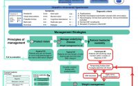 Consensus Guideline in Adult Idiopathic Intracranial Hypertension: an... |  Download Scientific Diagram