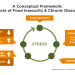 Causes and Consequences of Food Insecurity | Hunger and Health