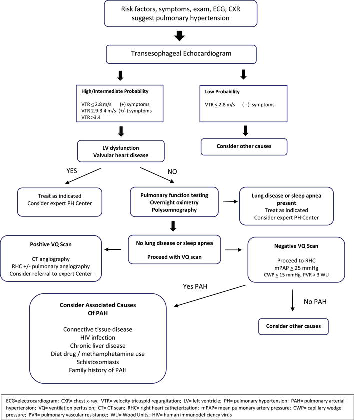 Advances in Management of Pulmonary Hypertension Associated with Systemic  Sclerosis | IntechOpen