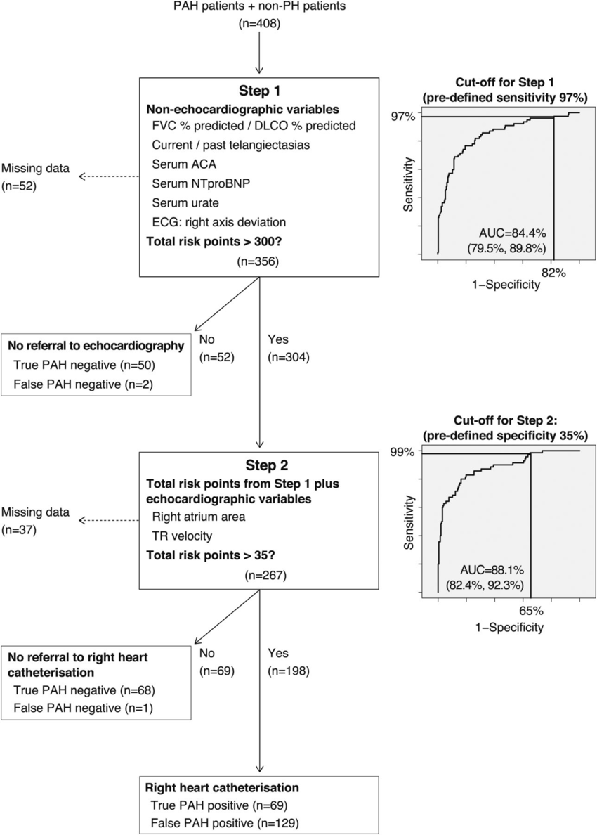 Two-step decision tree for detection of pulmonary arterial hypertension...    Download Scientific Diagram