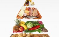 Why carbs and exercise are not the answers to reverse type 2 diabetes - Diet  Doctor