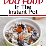 Homemade Dog Food In The Instant Pot | Traditional Cooking School