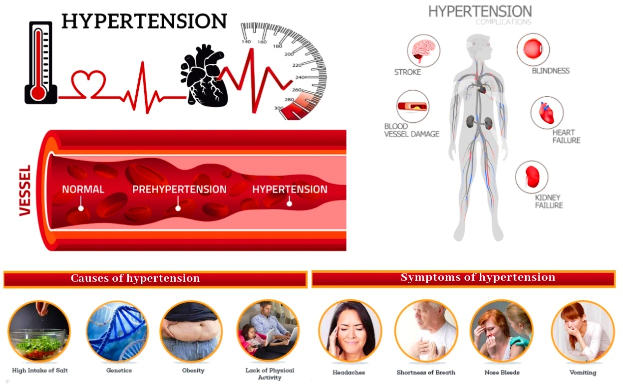 Hypertension Homeopathic Treatment symptoms,factors,causes, contribute  primary High Blood Pressure India Punjab-DrMakkar