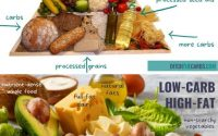 Low Carb vs Low Fat: Which Is Best? — Ditch The Carbs