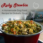 Homemade Diabetic Dog Food Recipe (with a step by step video)