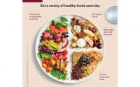 The new Canada's Food Guide explained: Goodbye four food groups and serving  sizes, hello hydration - The Globe and Mail