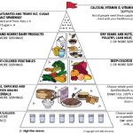 The food guide pyramid for older adults. From: Tufts University, 2002:... |  Download Scientific Diagram
