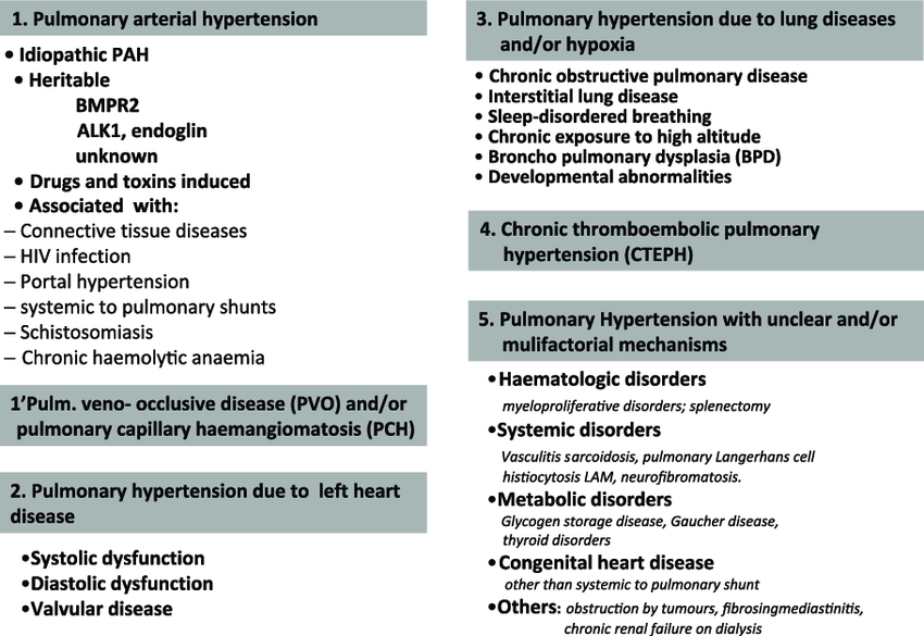Updated clinical classification of pulmonary hypertension according to...    Download Scientific Diagram