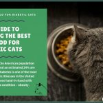 11 Best Cat Foods (Lower Carb) for Diabetic Cats in 2021 in 2021 | Diabetic  cat food, Best cat food, Dry cat food