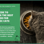 11 Best Cat Foods (Lower Carb) for Diabetic Cats in 2021