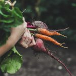 Can Diabetics Eat Carrots: Facts, Research, and Healthy Diets