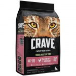 Best Dry Cat Food For Diabetic Cats   iPetCompanion
