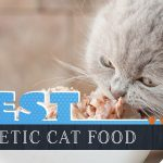8 Best Diabetic Cat Foods: Our 2021 Guide to Feeding a Diabetic Cat