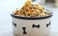 10 delicious and healthy dog food recipes you can make at home.