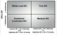 SciELO - Brasil - Resistant and refractory hypertension: two sides of the  same disease? Resistant and refractory hypertension: two sides of the same  disease?