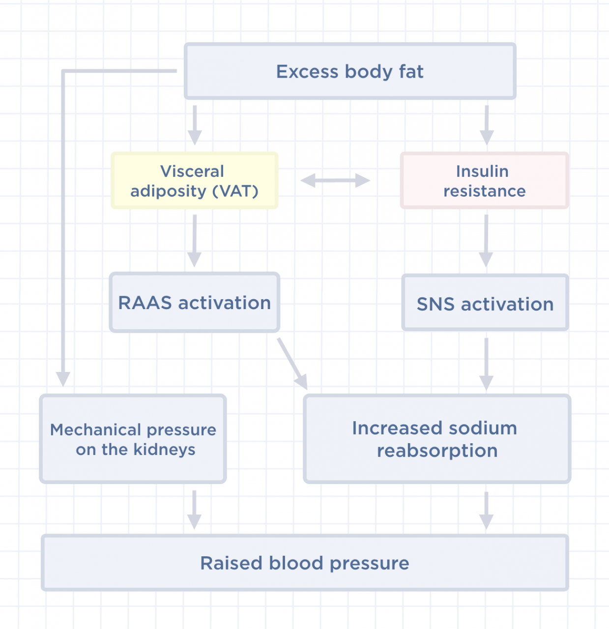 How does excess weight impact blood pressure - Health Insights | Withings