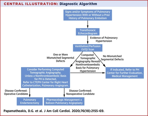 Chronic Thromboembolic Pulmonary Hypertension: JACC Focus Seminar | Journal  of the American College of Cardiology
