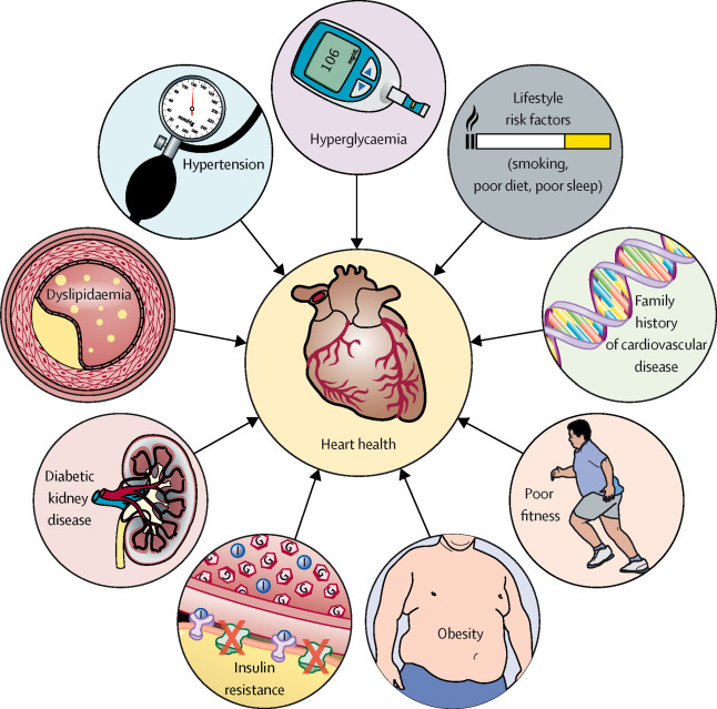 Macrovascular disease and risk factors in youth with type 1 diabetes: time  to be more attentive to treatment? - The Lancet Diabetes & Endocrinology