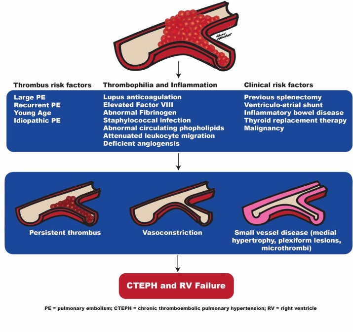 Chronic Thromboembolic Pulmonary Hypertension-Management Strategies and  Outcomes - Journal of Cardiothoracic and Vascular Anesthesia