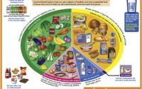 References in Dietary management of children with type 1 diabetes -  Paediatrics and Child Health