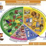 Dietary management of children with type 1 diabetes - Paediatrics and Child  Health