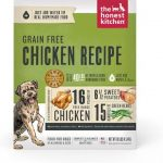 What is the Best Dog Food to Feed a Dog with Pancreatitis? - K9 Web