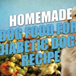 Making your own homemade dog food for diabetic dogs is the absolute best  way to cater to your pet's individual …   Diabetic dog, Dog food recipes, Diabetic  dog food