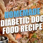 Best Choices for Non Prescription Diabetic Dog Food in 2021