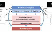 Publications | National Institute on Alcohol Abuse and Alcoholism |  Measuring the Burden — Alcohol's Evolving Impact on Individuals, Families,  and Society
