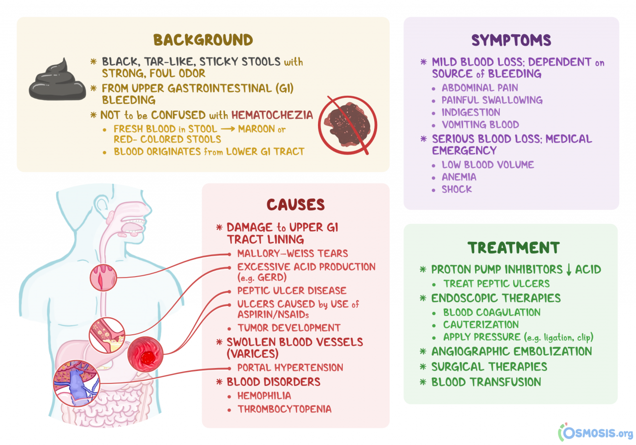 Melena: What Is It, Causes, Symptoms, Bleeding, Treatment, and More |  Osmosis