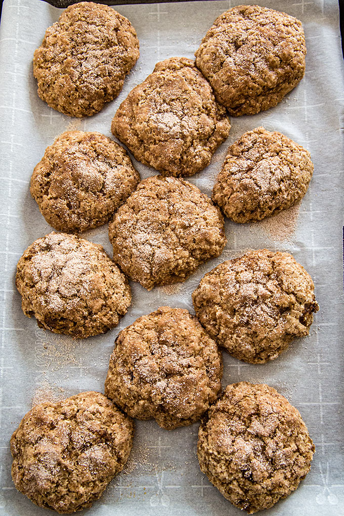 Vegan Snickerdoodles - Soft, Chewy, and Oil-free Cookies