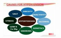 Hypertension: Causes, Symptoms, and Treatments   Docto Scope