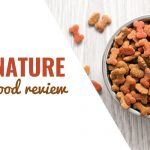 Zignature Dog Food Review: How Does It Stack Up?