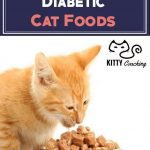 It's hard bein' healthy! If you've got a cat with diabetes, check out this  article about the best cat foods for di… | Diabetic cat food, Cat food,  Homemade cat food
