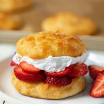 Low Calorie Fresh Strawberry Shortcake (4 ingredients) with Weight Watchers  Points | Skinny Kitchen